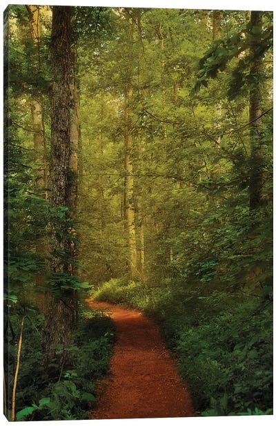 Fairytale Path Canvas Art Print