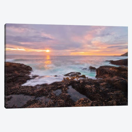 Nature's Palette 3-Piece Canvas #NMI8} by Natalie Mikaels Canvas Art