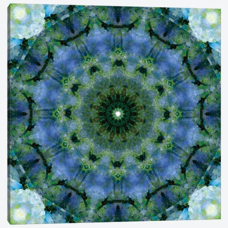 Colorful kaleidoscope. Canvas Print #NNA10} by Anna Miller Canvas Print