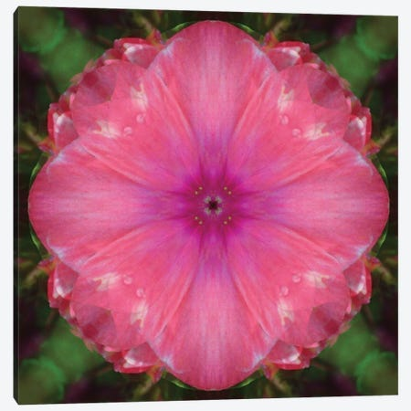 Colorful kaleidoscope. Canvas Print #NNA12} by Anna Miller Art Print