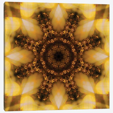Colorful kaleidoscope. 3-Piece Canvas #NNA13} by Anna Miller Canvas Art Print
