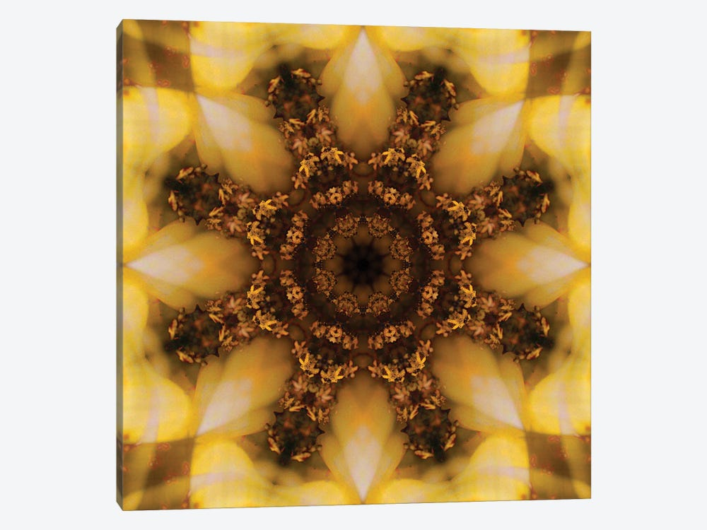 Colorful kaleidoscope. by Anna Miller 1-piece Canvas Art Print