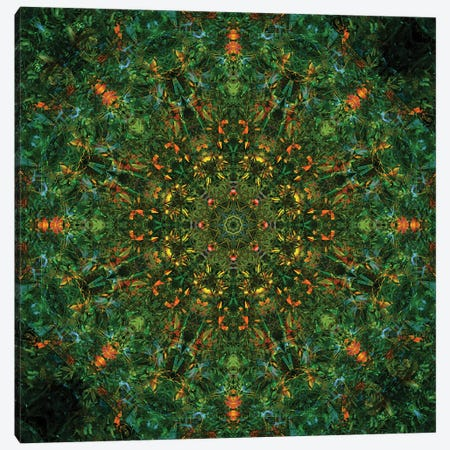 Colorful kaleidoscope. Canvas Print #NNA17} by Anna Miller Canvas Art
