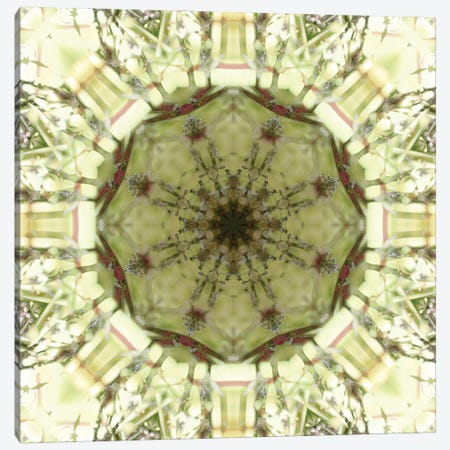 Colorful kaleidoscope. 3-Piece Canvas #NNA18} by Anna Miller Art Print