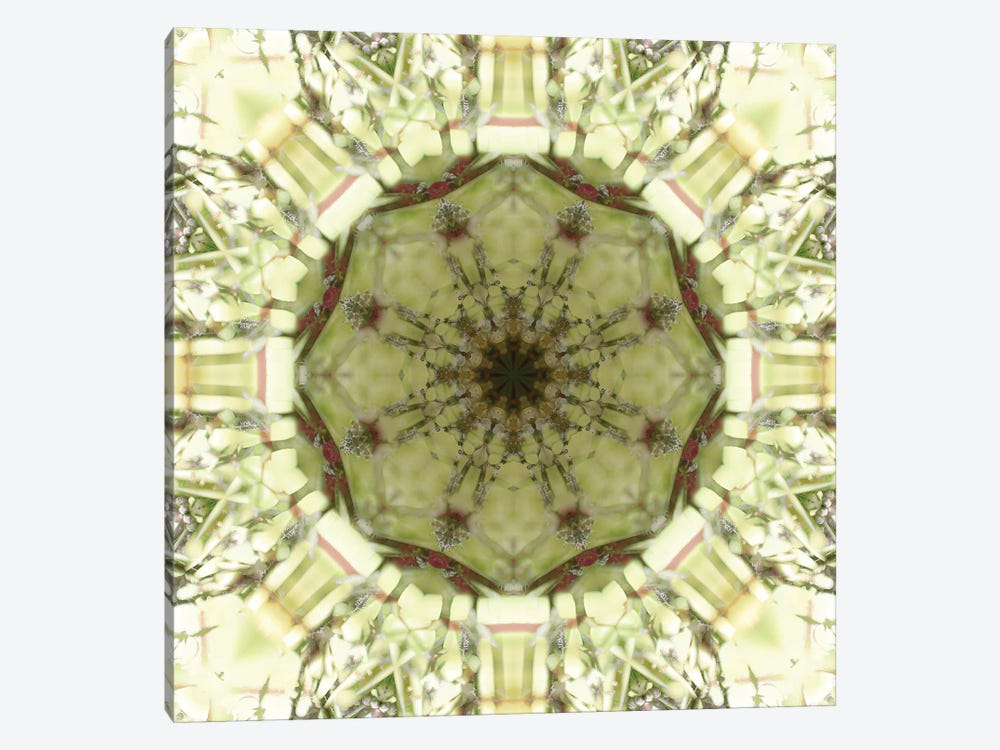 Colorful kaleidoscope. by Anna Miller 1-piece Canvas Wall Art