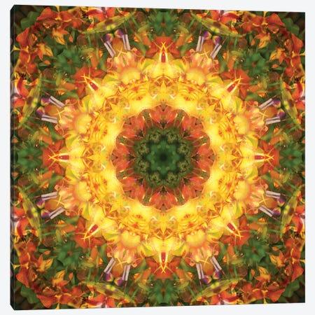 Colorful kaleidoscope. Canvas Print #NNA19} by Anna Miller Art Print