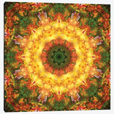 Colorful kaleidoscope. Canvas Print #NNA19} by Anna Miller Art Print