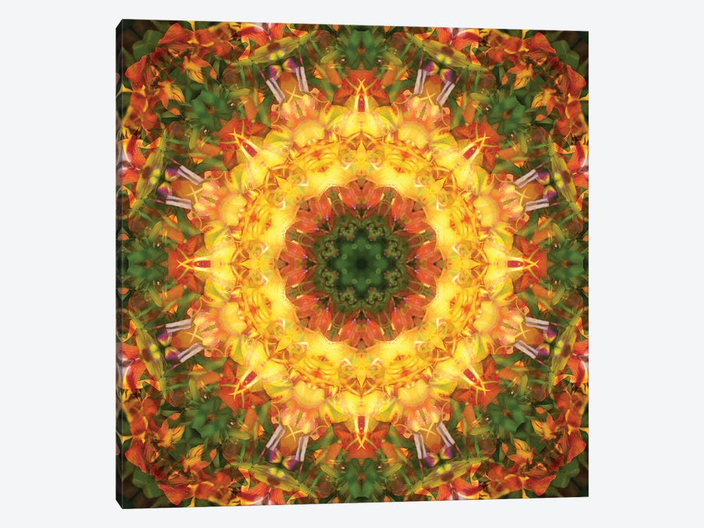Colorful kaleidoscope. by Anna Miller 1-piece Canvas Print