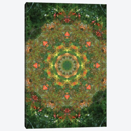 Colorful kaleidoscope. Canvas Print #NNA22} by Anna Miller Canvas Artwork