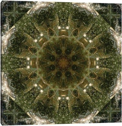 Colorful kaleidoscope. Canvas Art Print