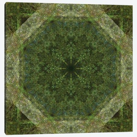 Colorful kaleidoscope. Canvas Print #NNA9} by Anna Miller Art Print