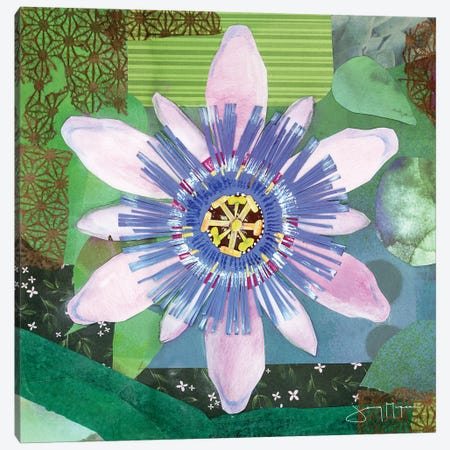 Passion Flower II Canvas Print #NNM15} by Jenny McGee Canvas Art