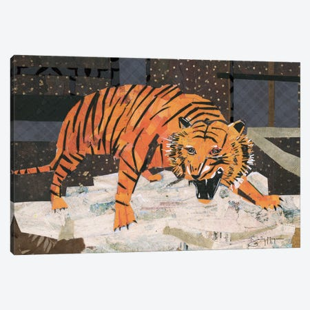 Roaring Tiger Canvas Print #NNM16} by Jenny McGee Canvas Wall Art