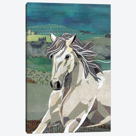 White Horse Freedom Canvas Print #NNM21} by Jenny McGee Canvas Wall Art