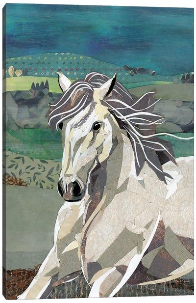 White Horse Freedom Canvas Art Print