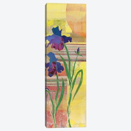 Iris I Canvas Print #NNM5} by Jenny McGee Canvas Artwork