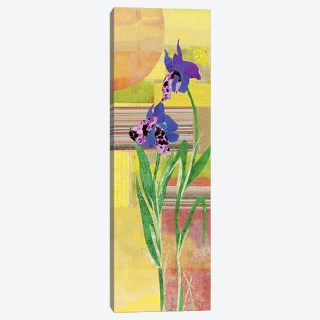 Iris II Canvas Print #NNM6} by Jenny McGee Canvas Art