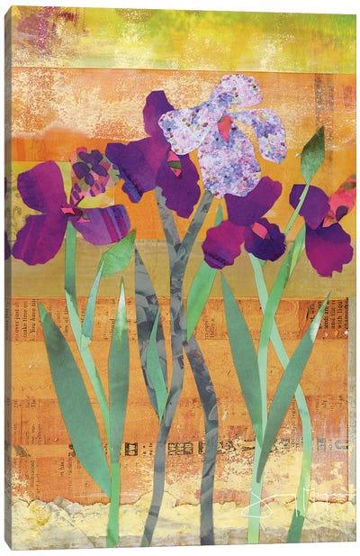 Iris III Canvas Art Print