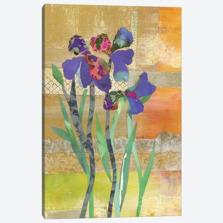 Iris IV Canvas Print #NNM8} by Jenny McGee Canvas Print