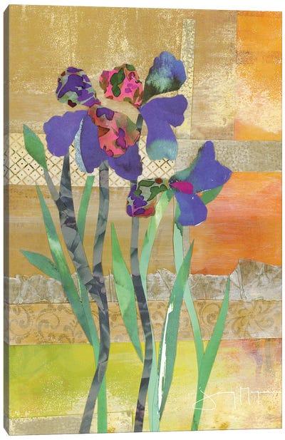 Iris IV Canvas Art Print