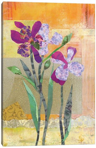 Iris V Canvas Art Print