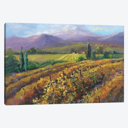Vineyard Tapestry I Canvas Print #NNT1} by Nanette Oleson Canvas Art Print