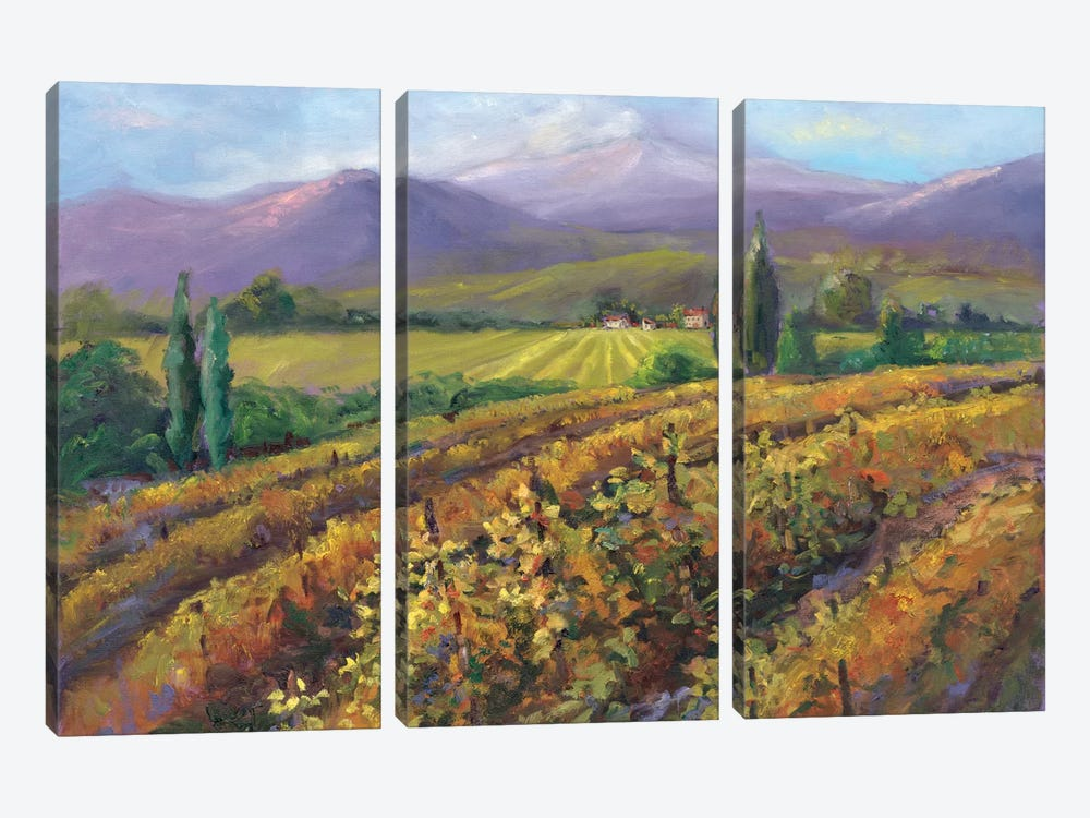 Vineyard Tapestry I by Nanette Oleson 3-piece Canvas Wall Art