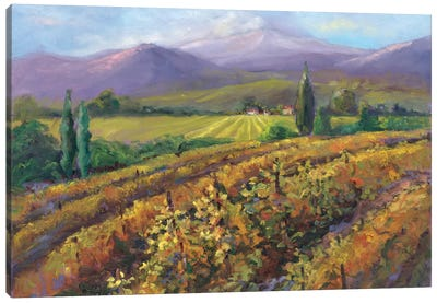 Vineyard Tapestry I Canvas Art Print