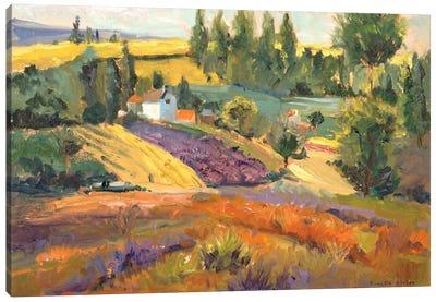 Vineyard Tapestry II Canvas Art Print