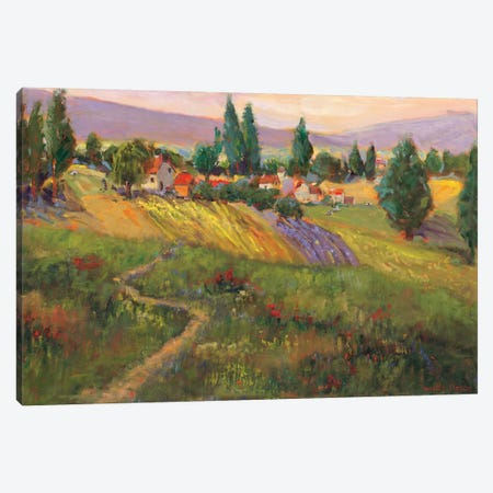 Vineyard Tapestry III Canvas Print #NNT3} by Nanette Oleson Art Print