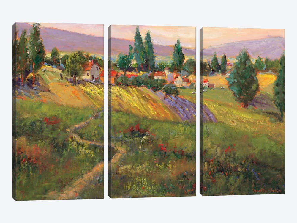 Vineyard Tapestry III by Nanette Oleson 3-piece Canvas Wall Art