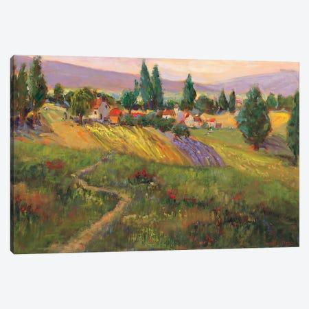 Vineyard Tapestry III Canvas Print #NNT3} by Nanette Oleson Art Print