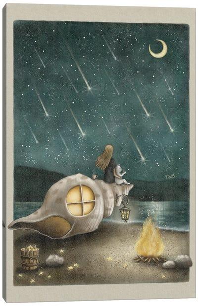 Meteor Shower Canvas Art Print
