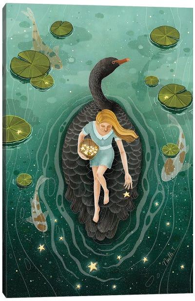 Upon The Black Swan Canvas Art Print