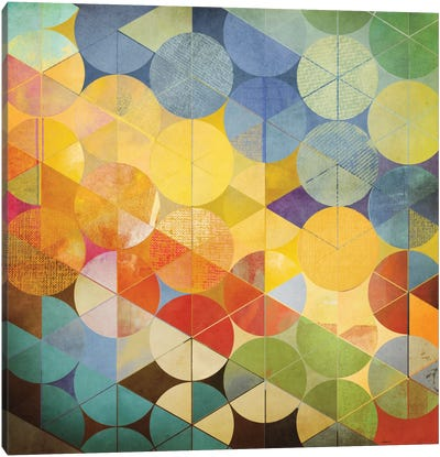 Full Circle II Canvas Art Print