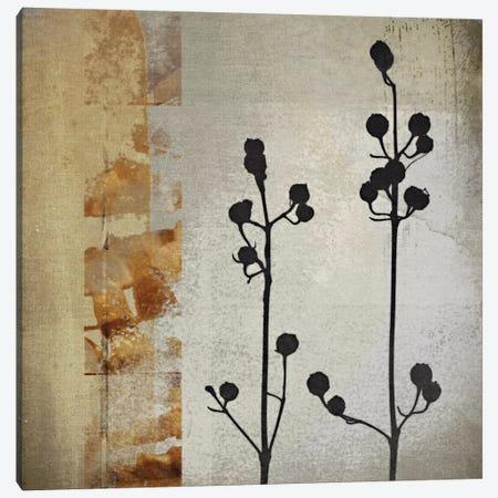 Sombras De Oro I Canvas Print #NOH35} by NOAH Canvas Art