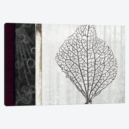 Coral I Canvas Print #NOH54} by NOAH Canvas Art