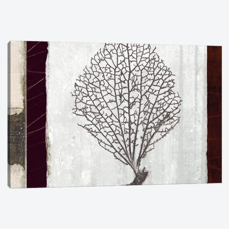 Coral II Canvas Print #NOH55} by NOAH Canvas Artwork