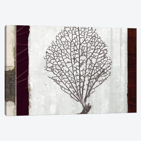 Coral II Canvas Print #NOH55} by NOAH Canvas Artwork