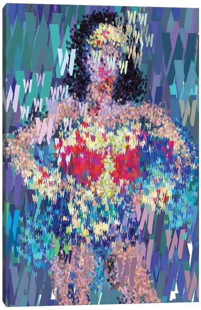 Superhero Type Art Wonder Woman Canvas Art Print