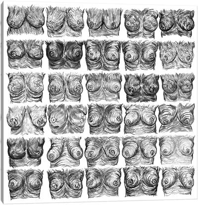 Breasts Ink Black And White Canvas Art Print