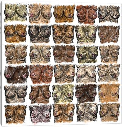 Breasts Diversity Canvas Art Print