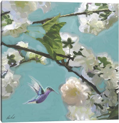 Hummingbird Florals II Canvas Art Print