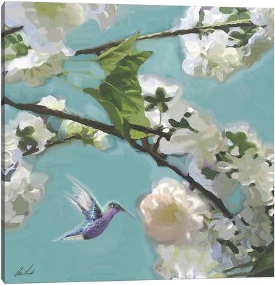 Hummingbird Florals II Canvas Art Print