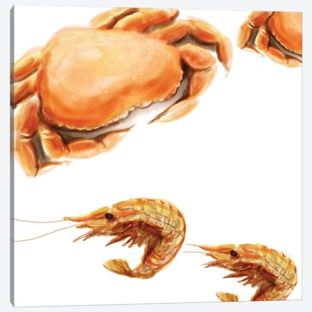 Illustrated Crab Canvas Print #NOV5} by Rick Novak Canvas Print