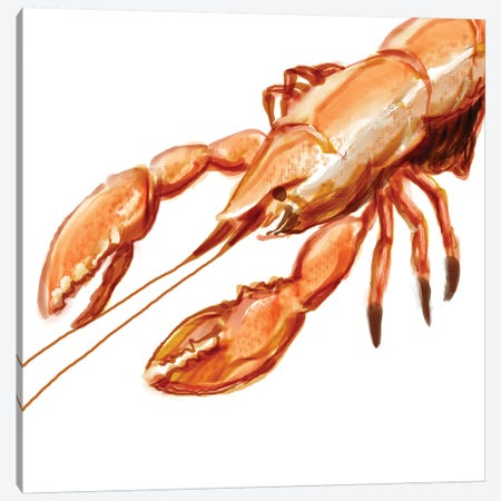 Illustrated Lobster I Canvas Print #NOV6} by Rick Novak Canvas Art Print