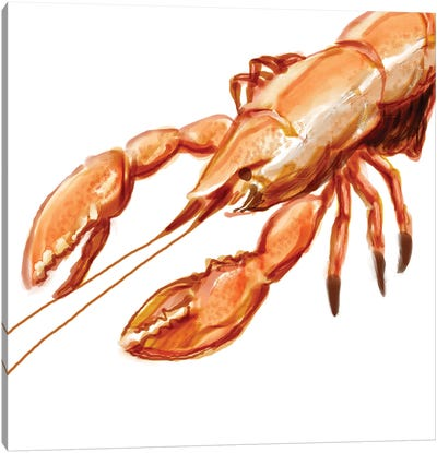 Illustrated Lobster I Canvas Art Print