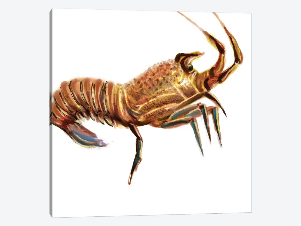 Illustrated Lobster II by Rick Novak 1-piece Art Print