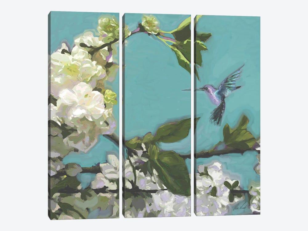 Hummingbird Florals I by Rick Novak 3-piece Canvas Art Print