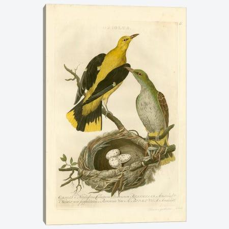 Nozeman Birds & Nests II Canvas Print #NOZ3} by Nozeman Canvas Art
